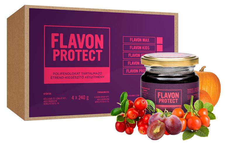 Flavon Protect (carton)